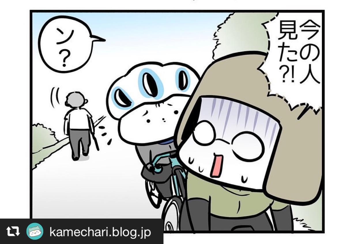 サイクリング中に遭遇した○○おじさん 画像3