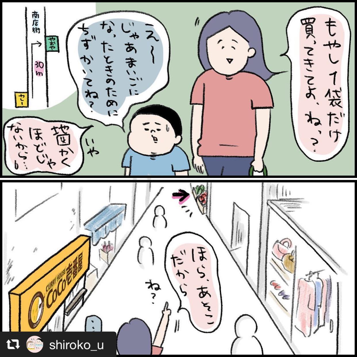 長男桃太郎くんの「はじめてのおつかい」 画像2